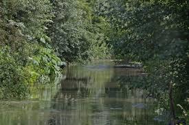 rivier.jpg