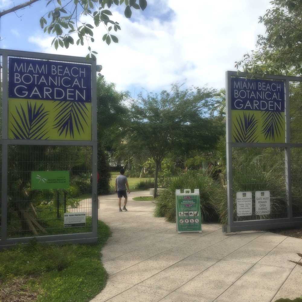 If you don't already know, the Miami Beach Botanical Garden is straight up magical...