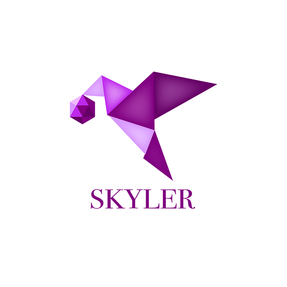 Skyler - Skyler is a tool that helps teachers and students manage project-based learning from beginning to end.