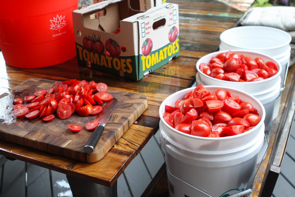 passato-making-tomato-sauce.jpg