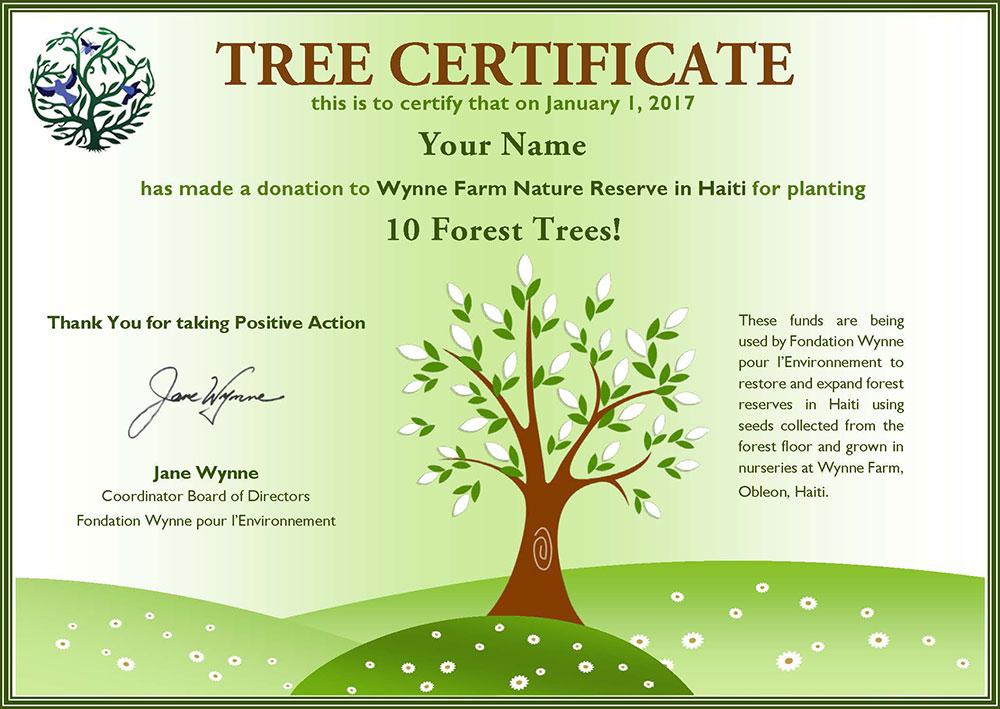 Tree-Certificate.jpg