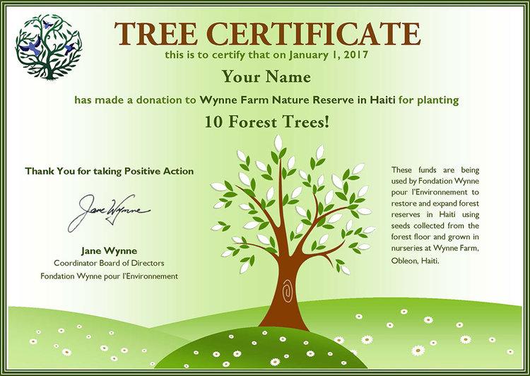 Plant a tree wynne farm tree certificateg yelopaper Gallery