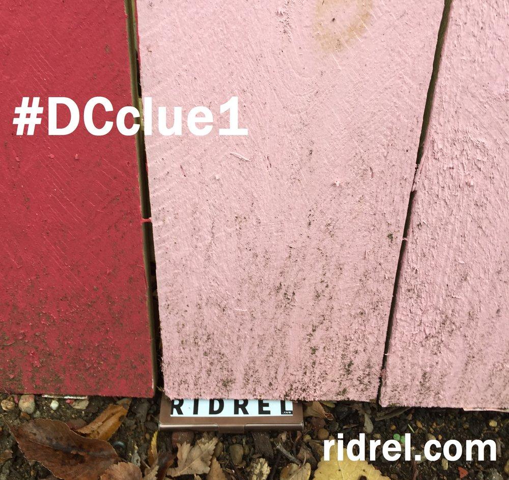 Clue 1 - DC.jpg