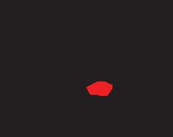 logo_teix.png