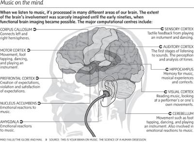 brain-and-music.jpg