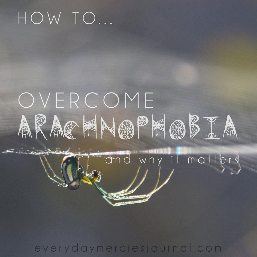 overcomearachnophobia.jpg