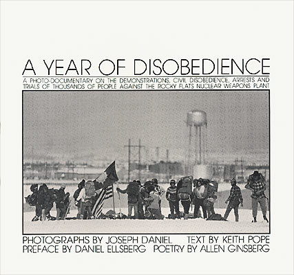 Year of Disobedience original.jpg