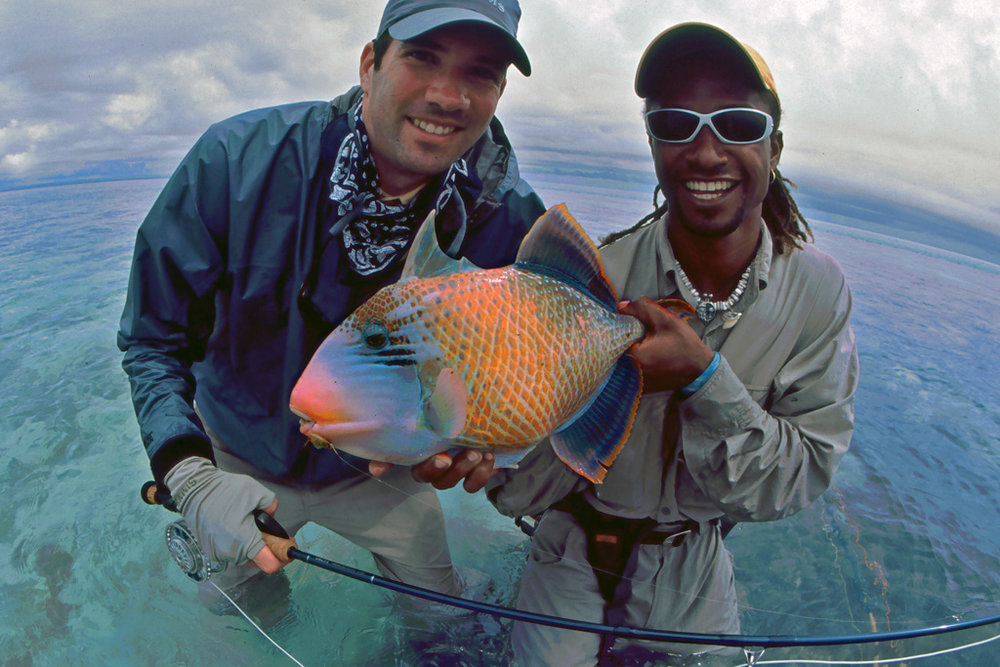 Tropical triggerfish in the Seychelles