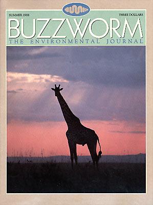 1.Premier Issue - Summer 1988.jpg