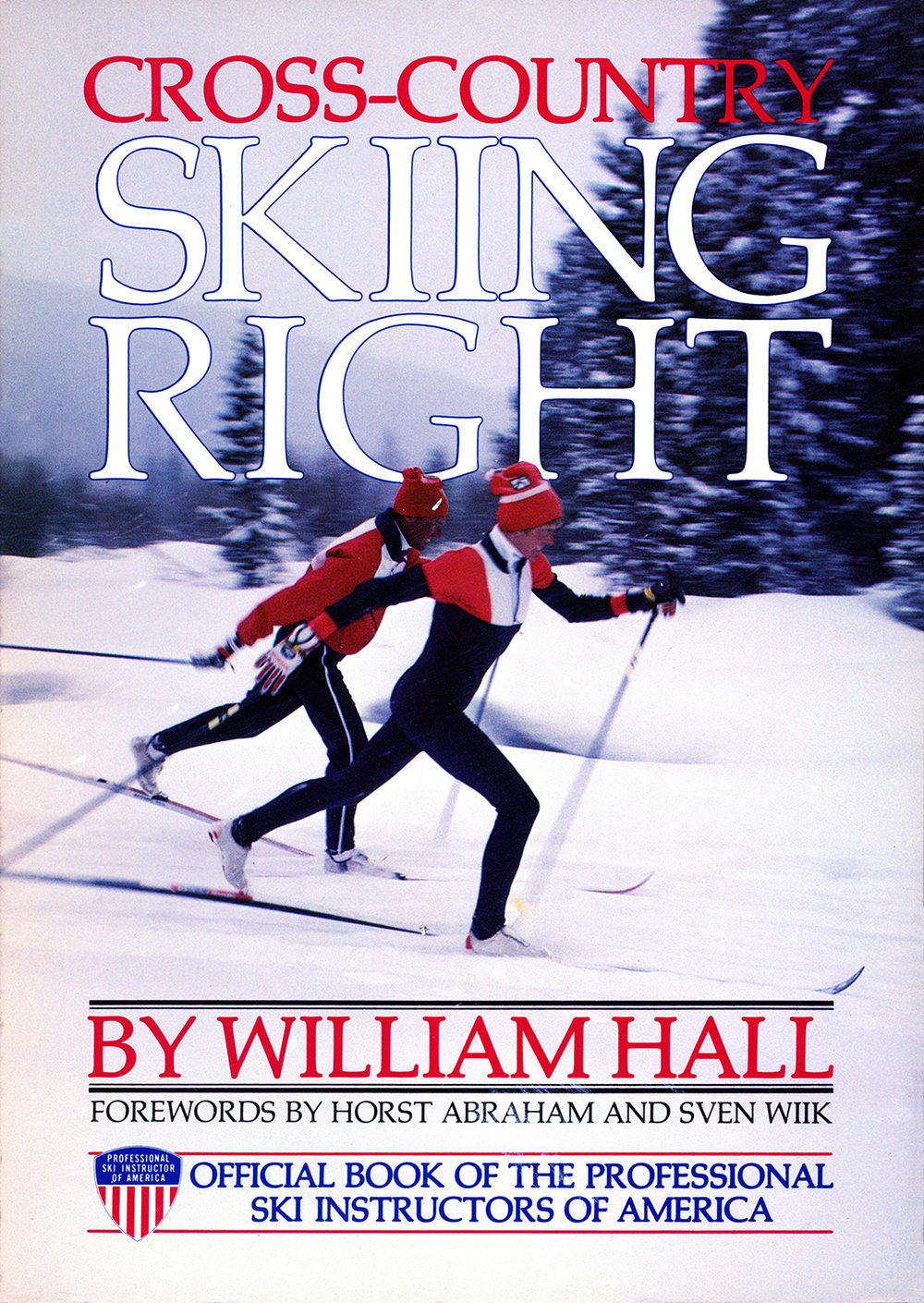 XC Skiing Right copy.jpg