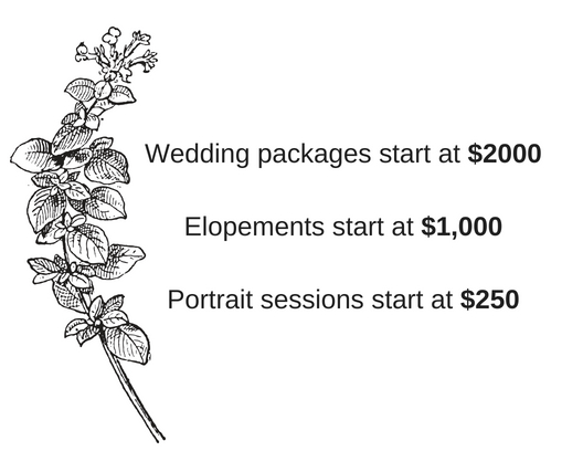 Wedding Packages start at $2200.jpg