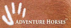 adventure horses.jpg