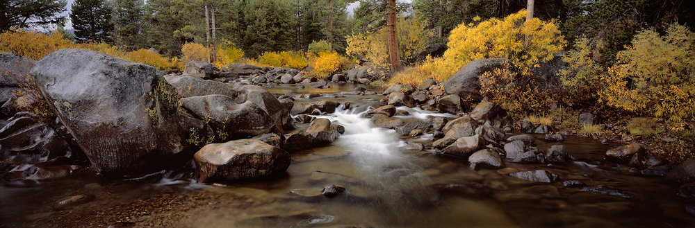 Fall Color, Carson River Panorama