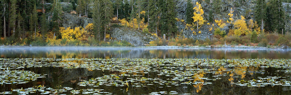 Lily Pads and Fall Reflections, Lily Lake, Lake Tahoe