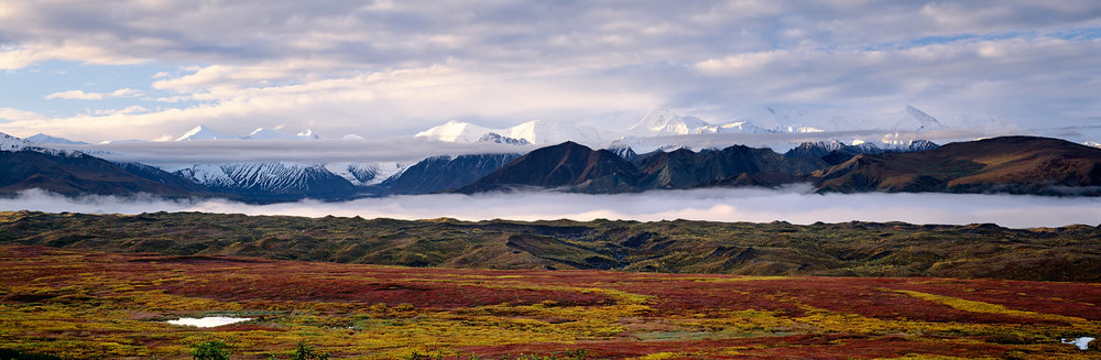 Cloud River, Muldrow Glacier, Denali