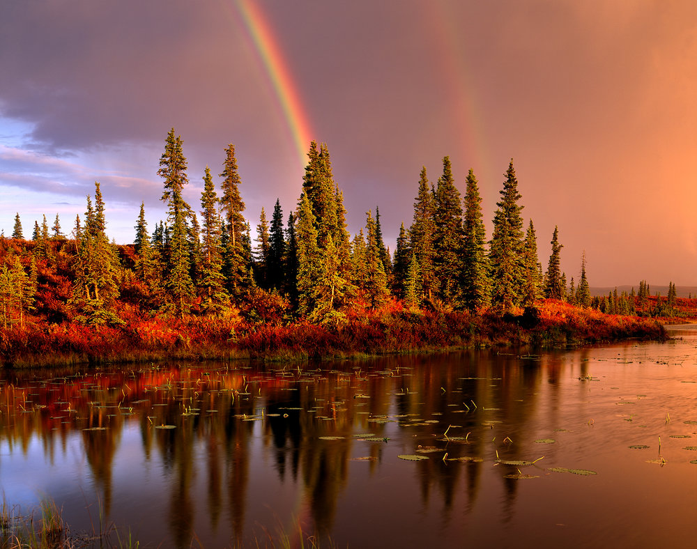Double Rainbow, Kettle Pond, Denali