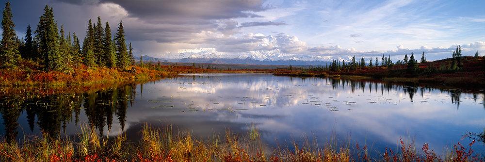 Beaver Pond Reflection, Denali