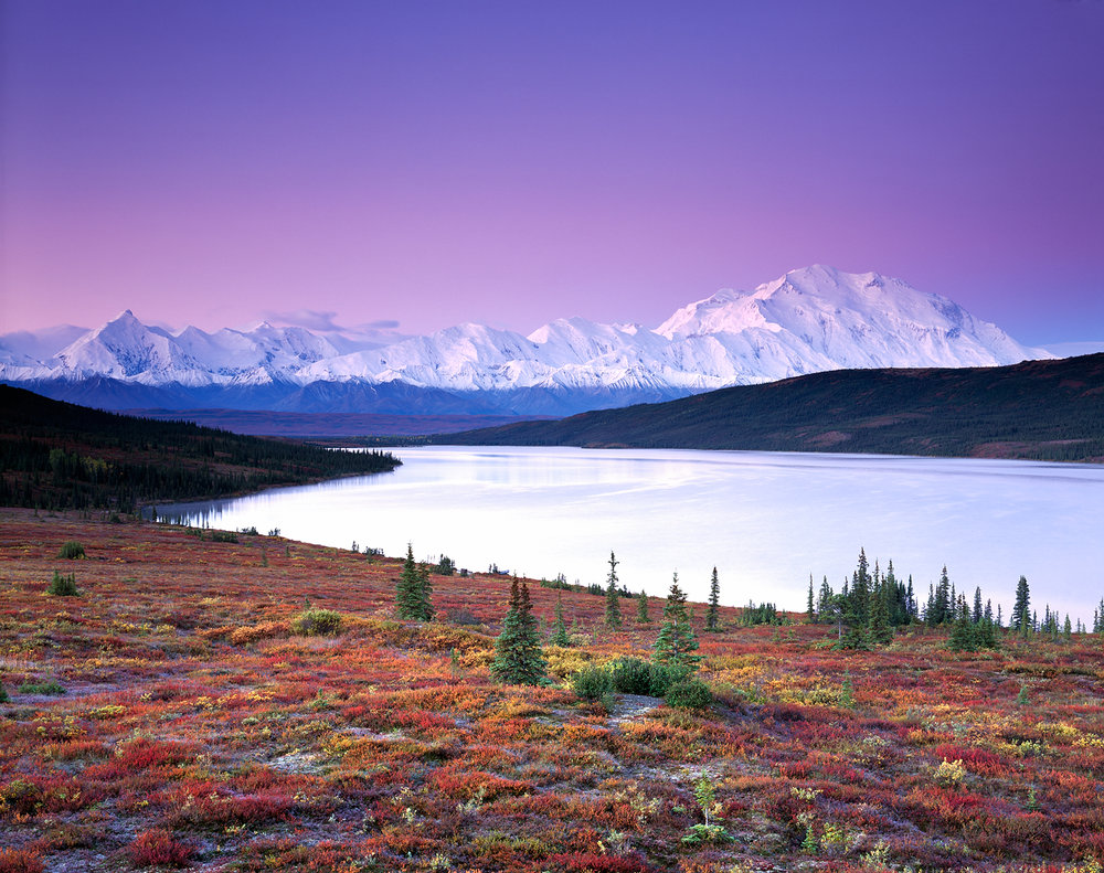 Morning Glow, Autumn, Denali