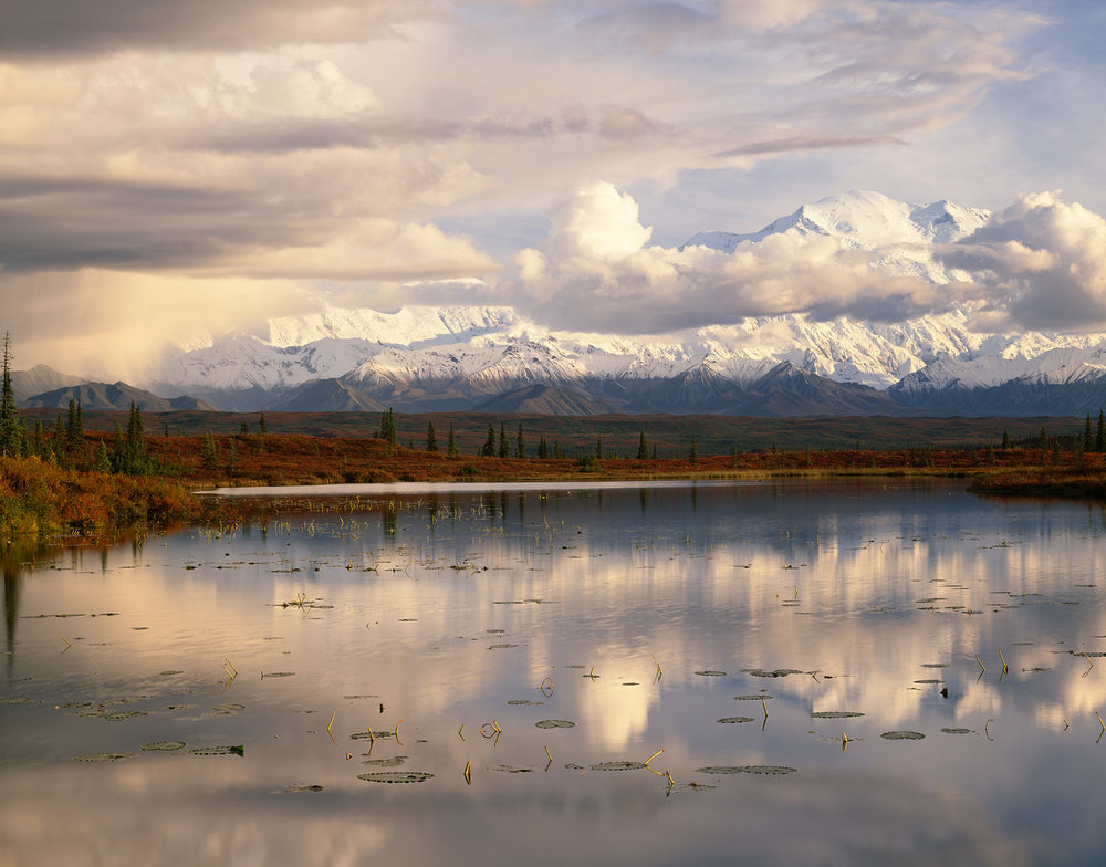 Approaching Storm, Kettle Pond, Denali