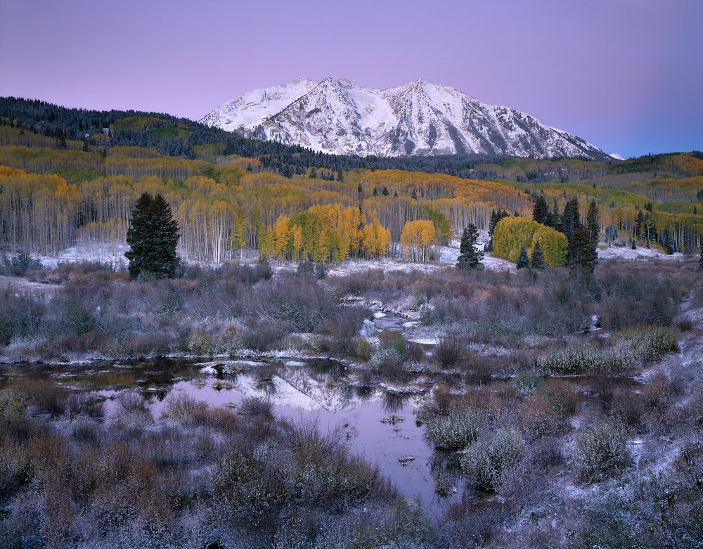 Autumn Morning, Independence Pass, Colorado