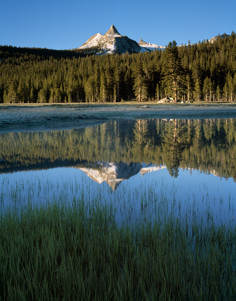 Cathedral Peak Reflection, Tuolumne Meadows, Yosemite, California
