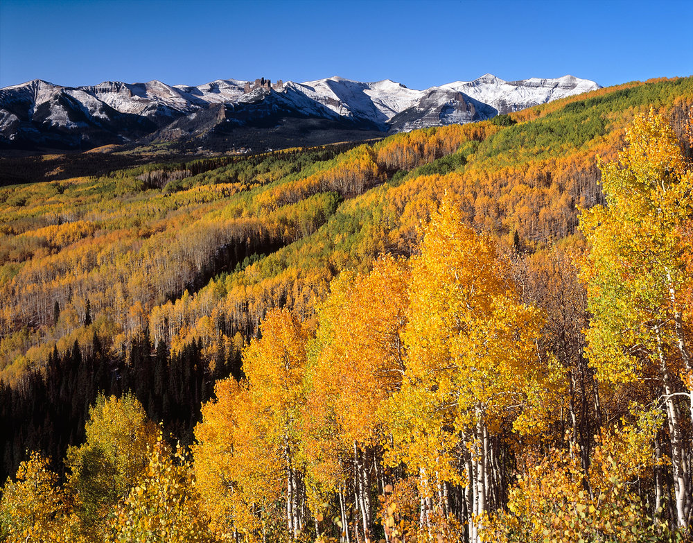 Colorado Fall Trees and Mountains
