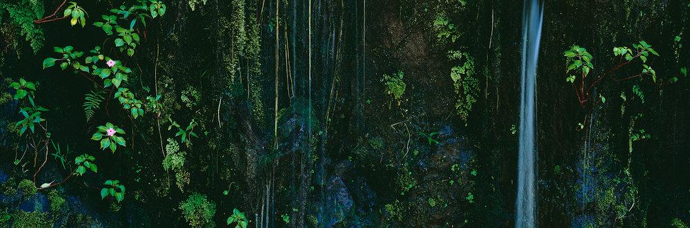 Plumeria Falls, Hana, Maui, Hawaii