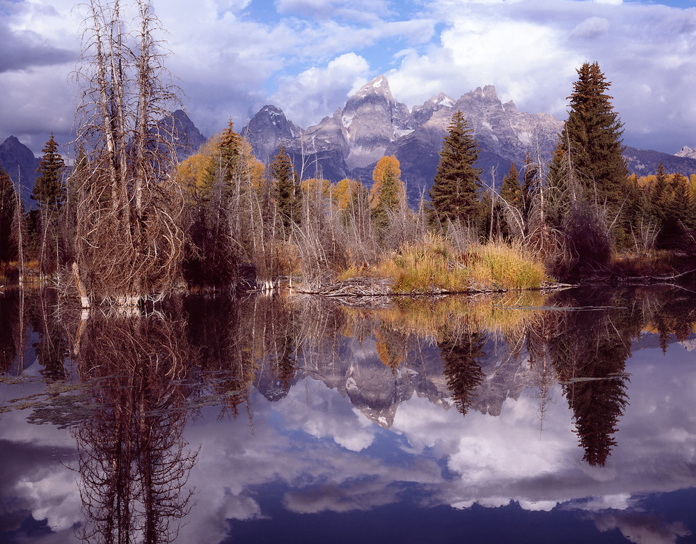 Schwabacher's Beaver Pond Reflection, Grand Tetons