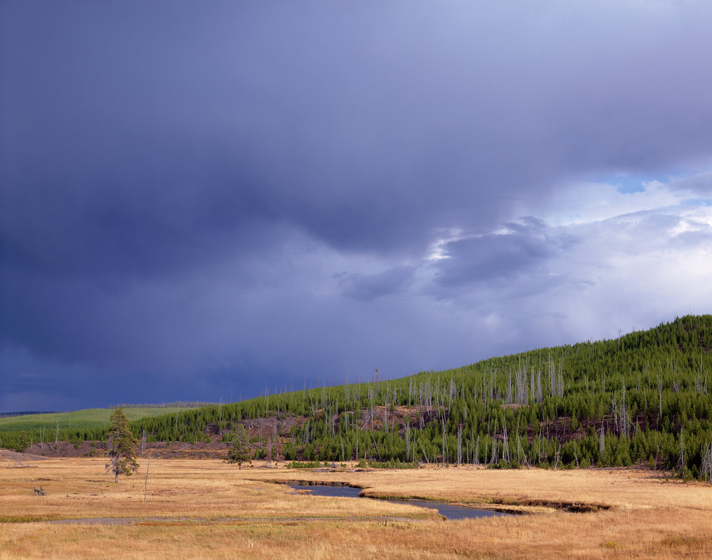 Evening Storm Light, Yellowstone