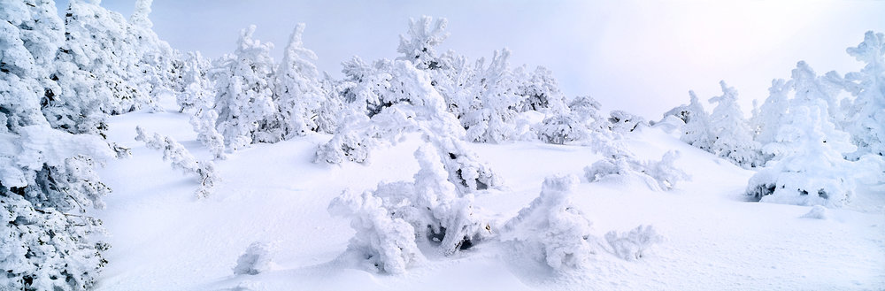 Snow Sculpture Panorama