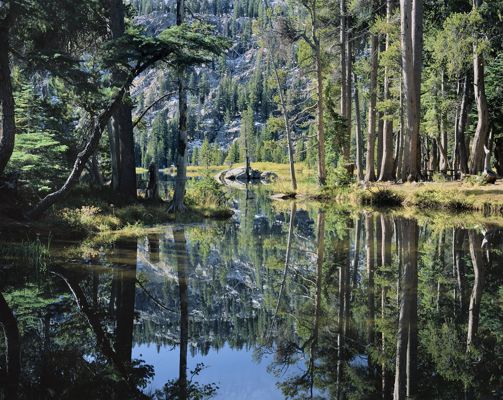 """Window to Woods Lake, Forest Reflection"". A new release by Large Format Photographer, Jon Paul."
