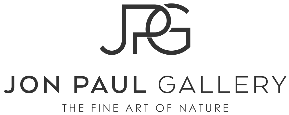 Jon Paul Gallery