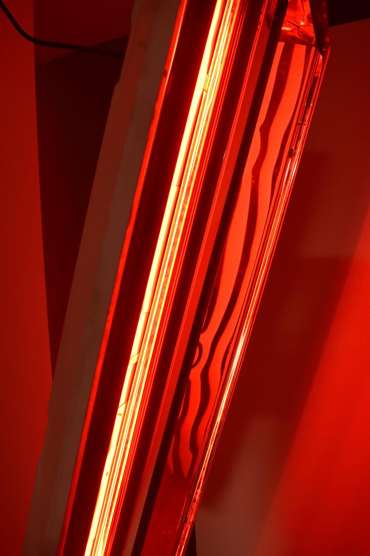 red002.jpg