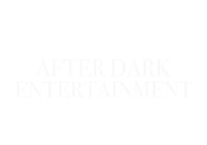 After Dark Entertainment Duluth Mn Wedding Djs