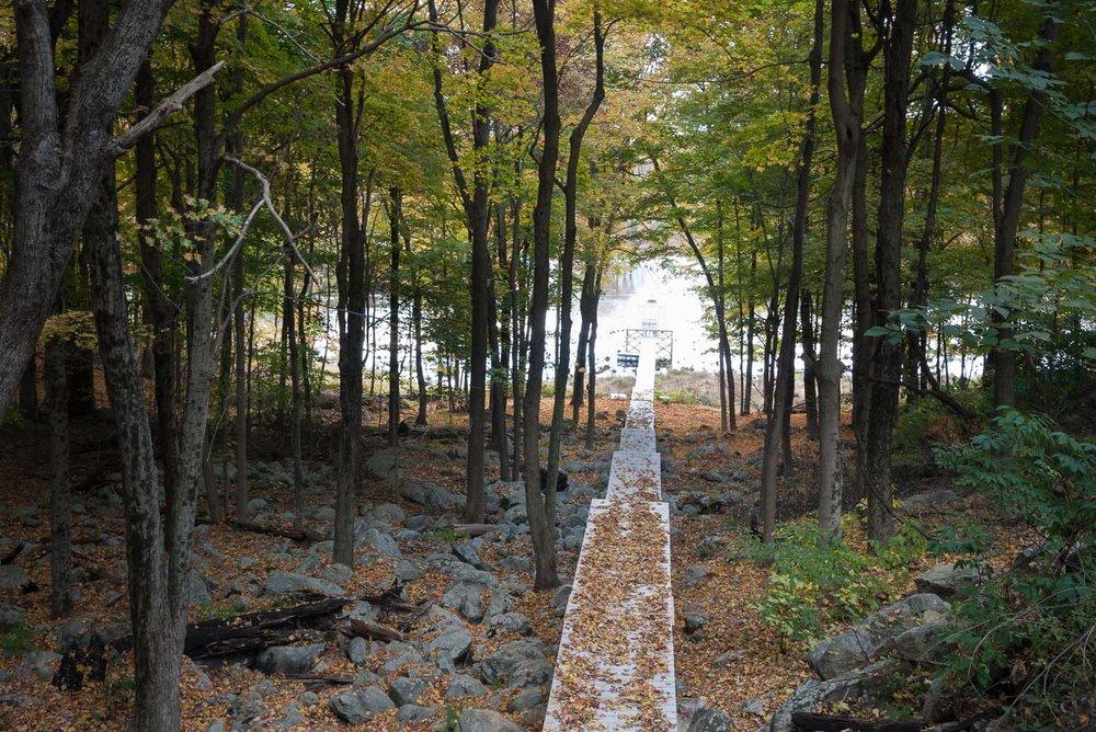 fall2015_13.jpg