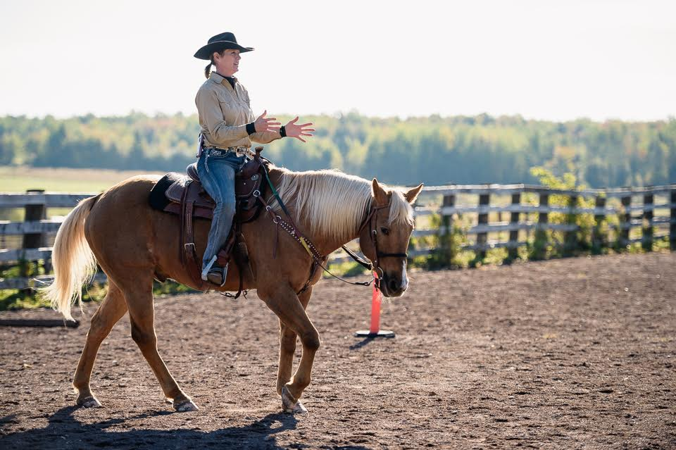 Terry giving a demonstration on her horse Skip. She is riding without reins and directing him through body language. Skip is relaxed. attentive and motivated.    To see more about Terry's philosophy and experience please see Page for OUR TEAM