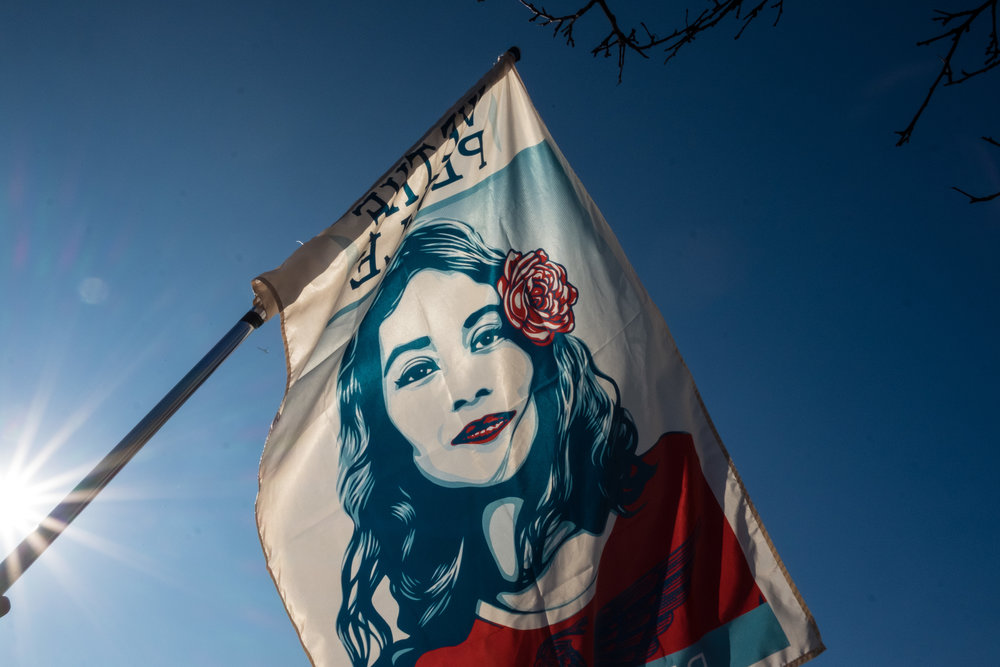Womens March on Chicago-9.jpg