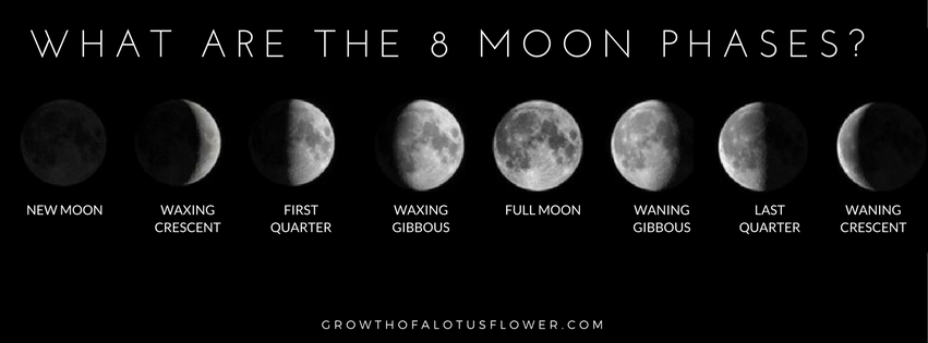 A guide to help you manifest your intentions with the moon cycle new moon occurs when the moon is positioned between the earth and sun and the illuminated portion of the moon is on the back side of the moon which is sciox Image collections