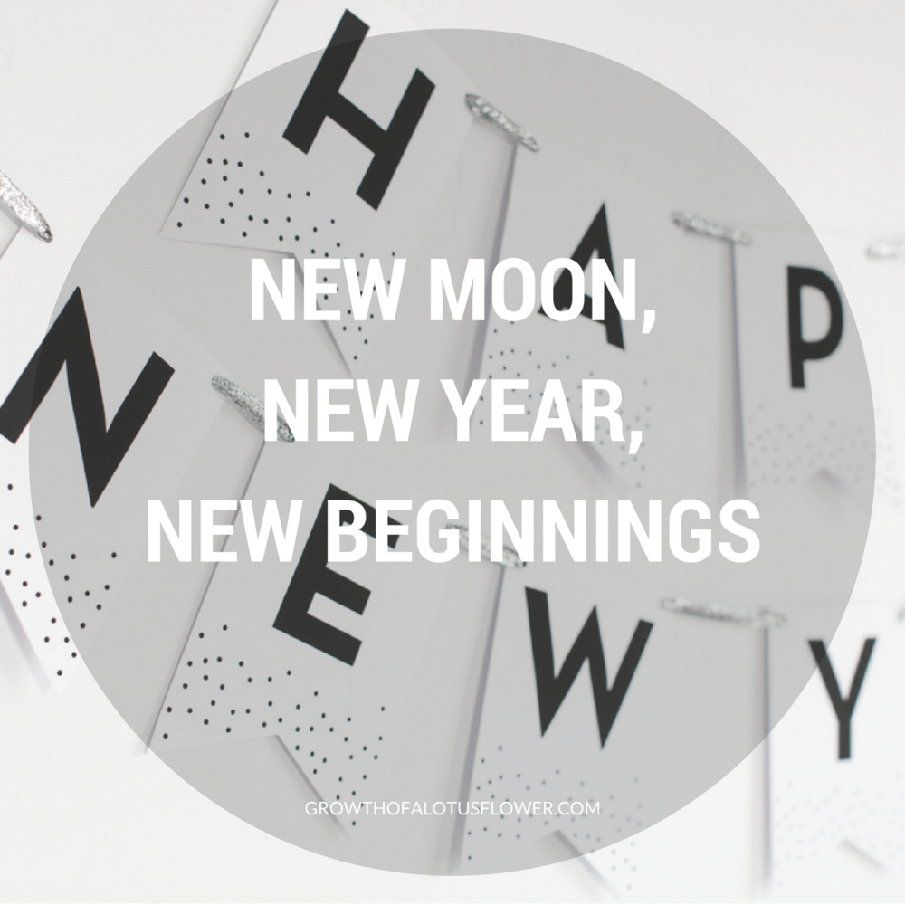 December New Moon, New Year, New Beginnings — Growth of a Lotus Flower