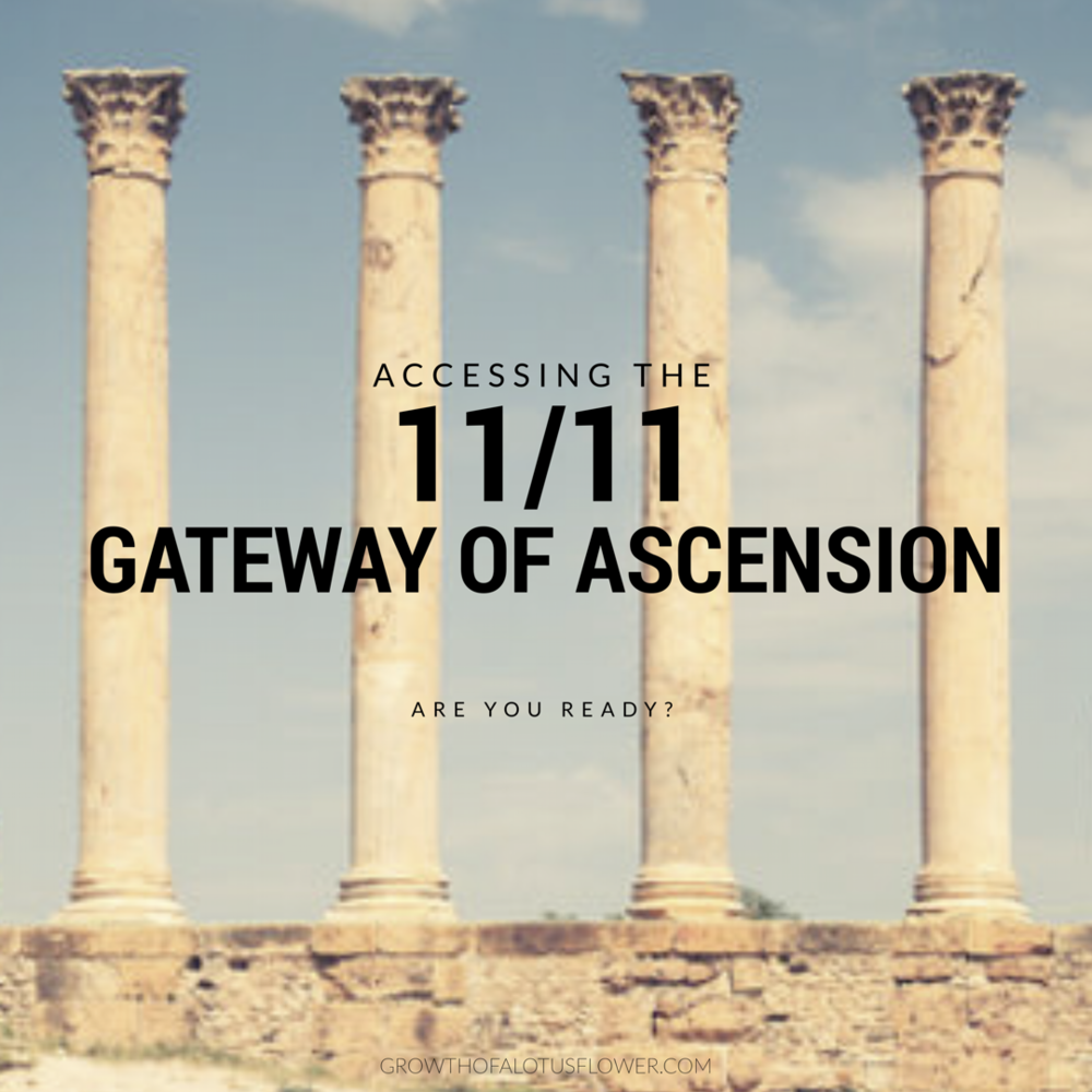 Accessing The 1111 Gateway Of Ascension Growth Of A Lotus Flower