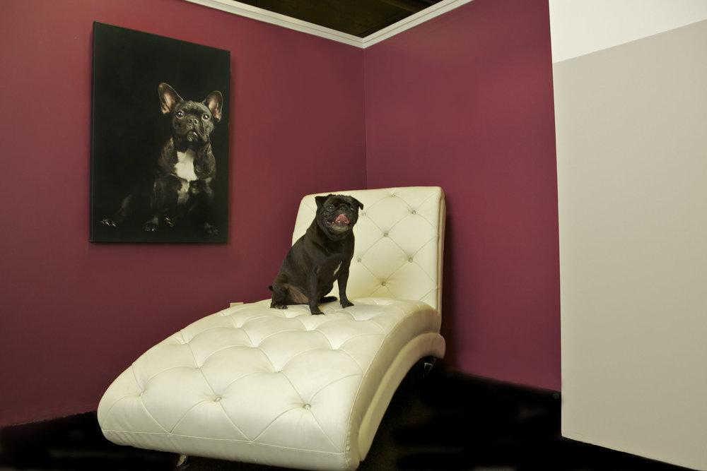 DPH Chelsea - Lounge.jpg