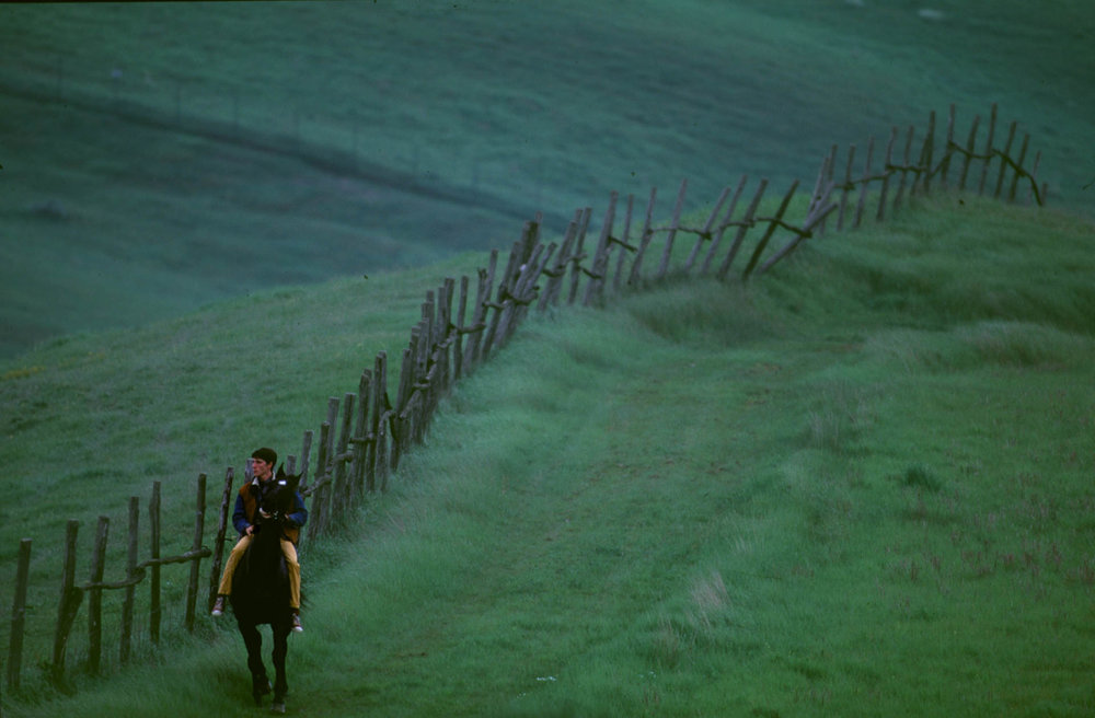 """Siena, 1 July 1991 Francesco Ticci - known as """"Tredici"""" - is one of the few jockeys to be born in Siena. He spends hour after hour riding in the hills around the lonely village of Asciano."""