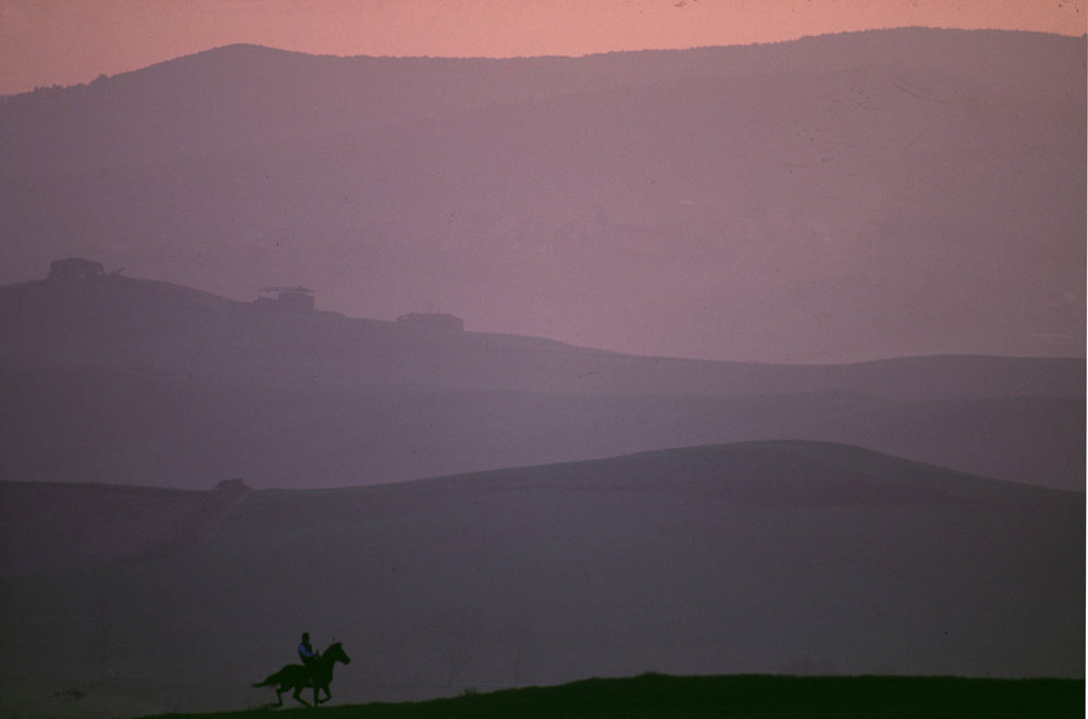 """Siena, 1 July 1991 Massimo Coghe -known as """"Massimino"""" -racing his horse in the Siena countryside."""
