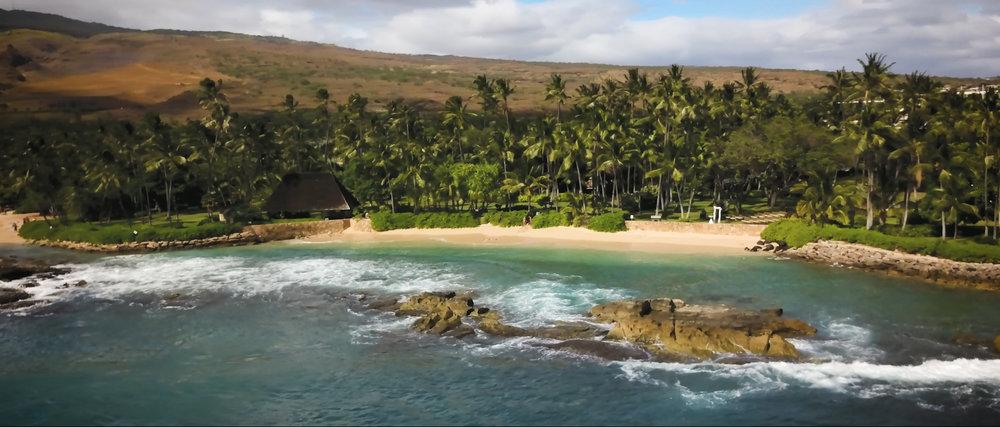 hawaiiwedding1.jpg