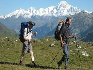 Trekking poles are less popular for level ground, but still very useful. They help you keep a steady pace, and again, transfer some weight away from your knees. They won't necessarily save your life on level ground, but they can certainly save your pace and your knees.