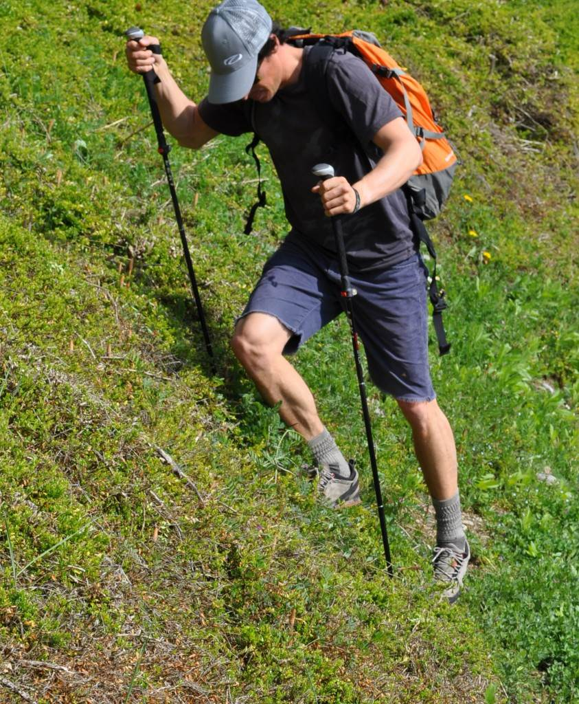 Traversing is when you are walking parallel to a slope. Trekking poles can be an enormous aid in these situations. One leg is still going to do the brunt of the work, but trekking poles can help you balance and make a long traverse much less tiring for your poor little legs.