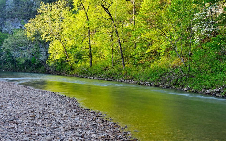 All 135 miles of the Buffalo National River remains one of the few undammed rivers in the lower 48 states.Fishermen may be pleased with the smallmouth bass population in the upper reaches of the river, or the largemouth bass and catfish in the lower reaches.