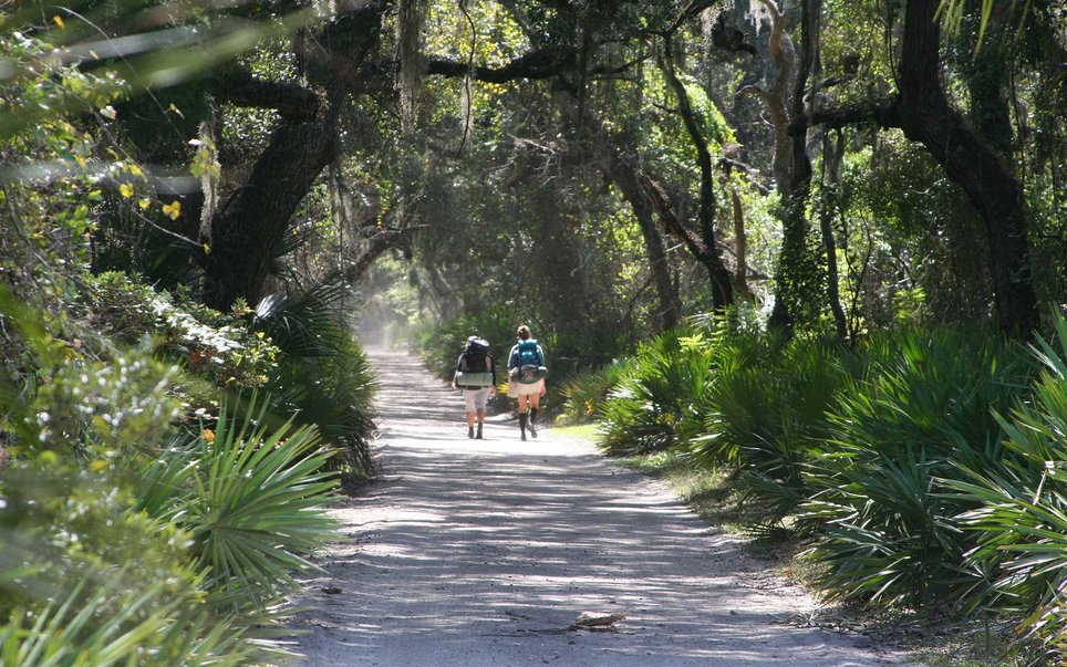 Cumberland Island National Seashore, Georgia's largest barrier island, is full of untouched maritime forests, beaches, and marshes.
