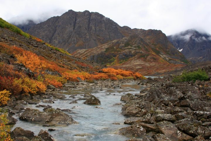 If you should find yourself in the country's northernmost state, you're going to want to experience it for all that it's worth. It means you have to see the South Fork Eagle Run Trail, which features mountains, rivers, and all the natural beauty that Alaska has to offer.