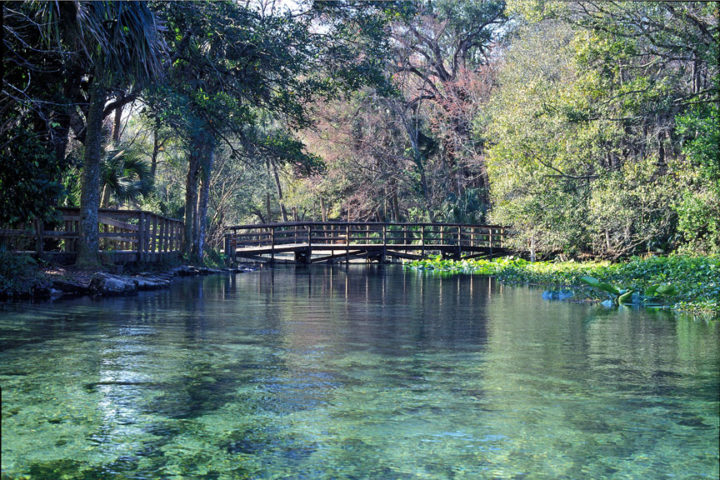 If you're looking to take a break from lounging on the beach and explore some of the more diverse nature of the Sunshine State, Wekiwa Springs has to be on your list. The water is crystal clear and it's perfect for canoeing, biking, and hiking pretty much any time of the year.